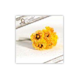 AY14 Marigold