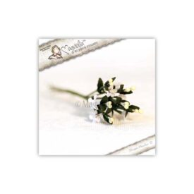 WWW14 Kansas Fresh White Flowers