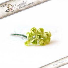SB14 vintage lime tulip