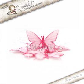 gladiolus butterflies  m