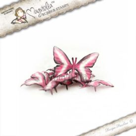 rose campion butterflies s