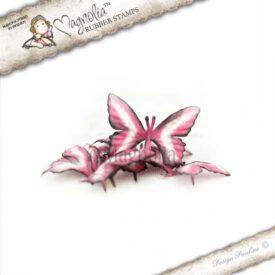 rose campion butterflies  m